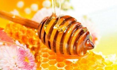 Можно или нельзя употреблять мед во время поста?