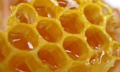 Что такое забрус пчелиный: свойства и применение