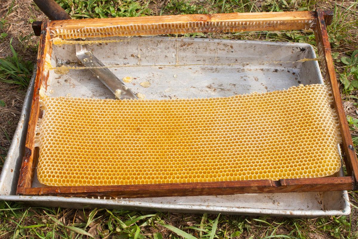 Делаем рамки для пчел своими руками