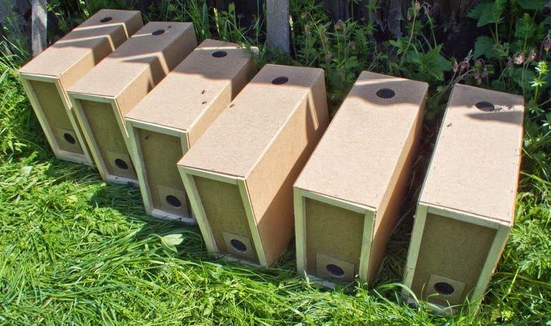 Пчелопакеты продаются в нуклесах