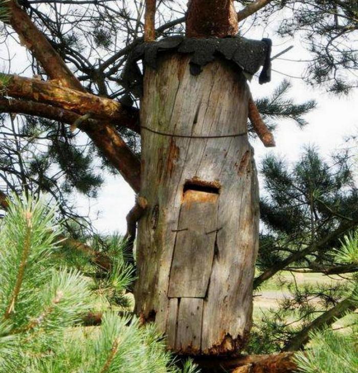 Улей в стволе дерева