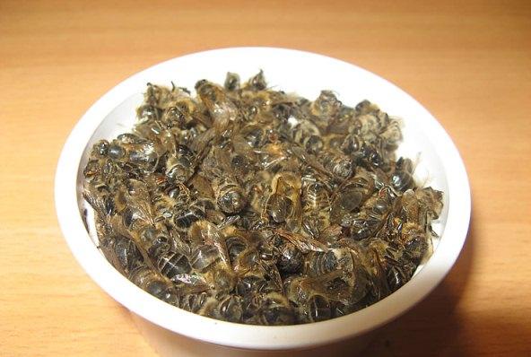 рецепт приготовления из подмора пчел