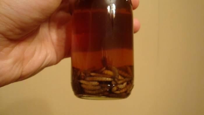 Лучшая пропорция для настойки 20 мл. личинок и 80 мл спирт 80%.