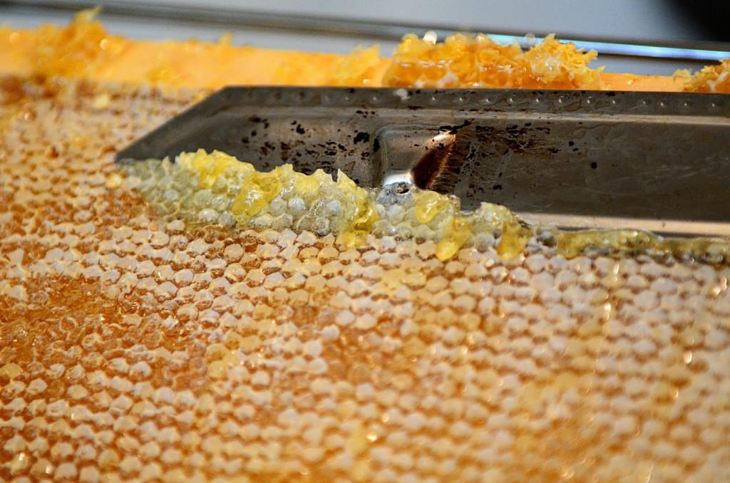 Снятие пчелиного забруса