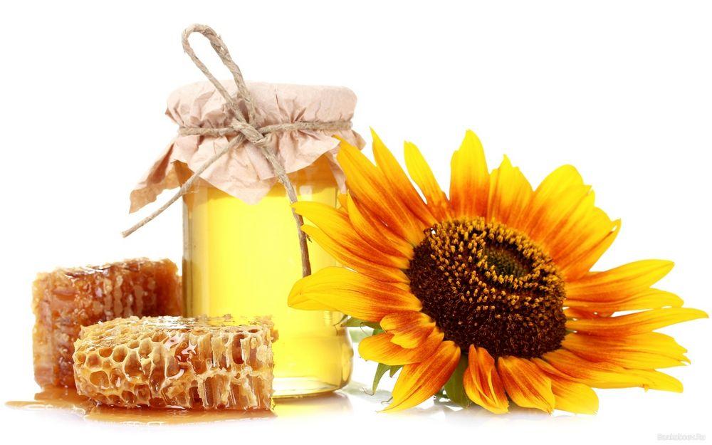 Мед из подсолнуха