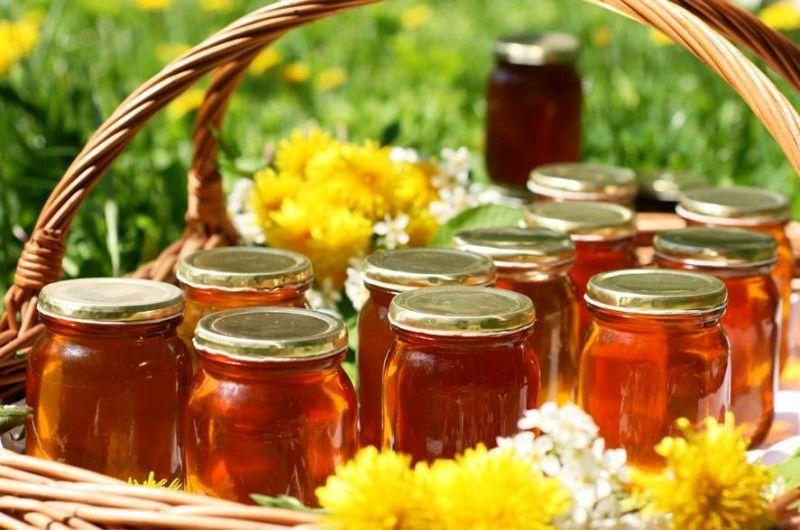 Молочайный мед