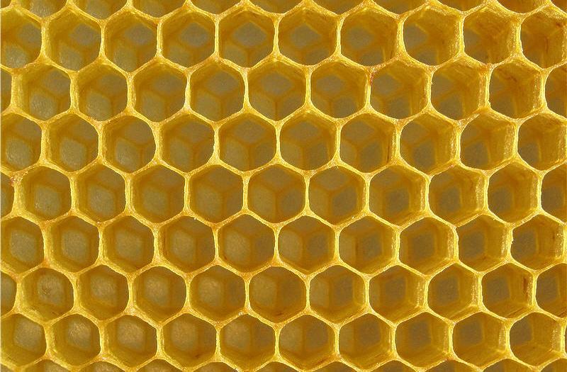 Правильная форма пчелиных сот