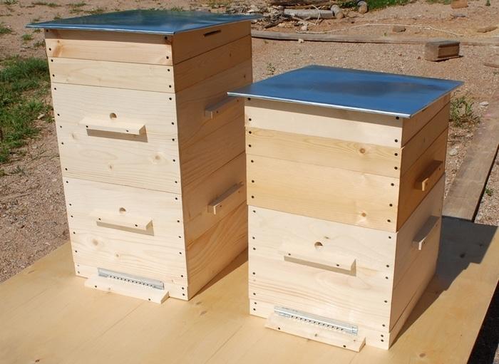 Приобретение ульев и пчел - это важная часть пчеловодства, так сказать, старт