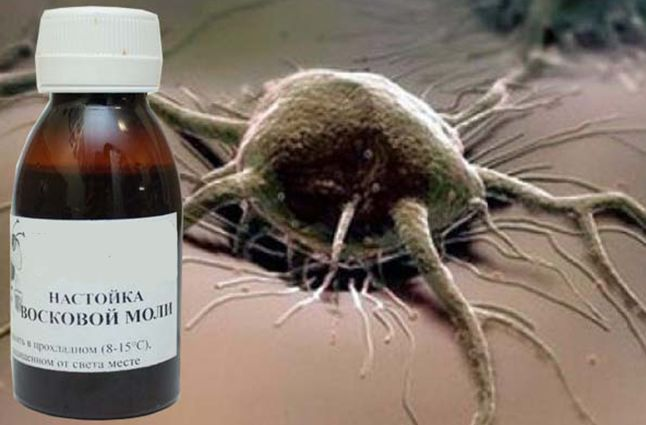 Лечение онкологию настойкой прополиса