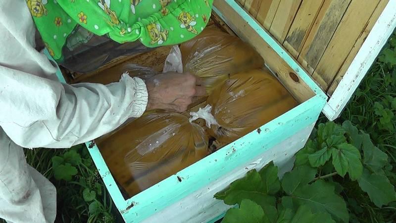 Подкармливайте пчел только при надобности